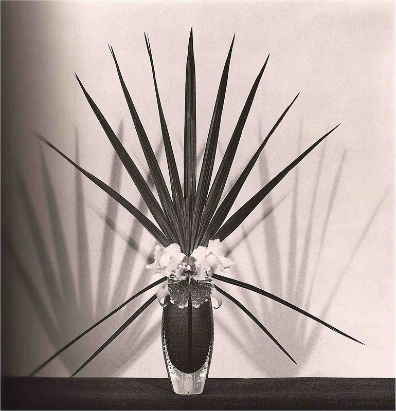 Mapplethorpe-22